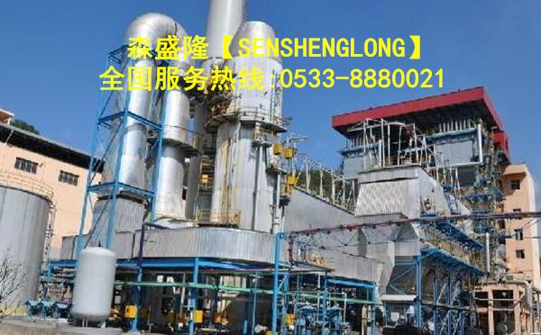 大型锅炉除垢剂高效清洗除垢